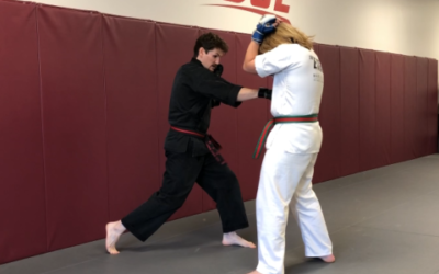 Training Tip Tuesday: Sparring Combinations